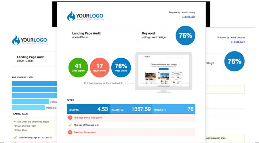 free seo report tool